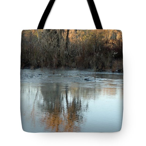 Tote Bag featuring the photograph Flint River 17 by Kim Pate