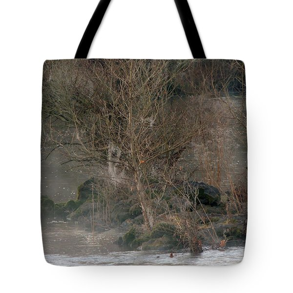 Tote Bag featuring the photograph Flint River 19 by Kim Pate