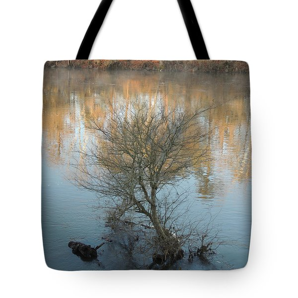 Tote Bag featuring the photograph Flint River 24 by Kim Pate