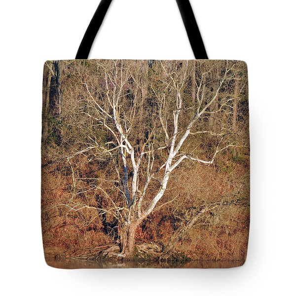 Tote Bag featuring the photograph Flint River 25 by Kim Pate