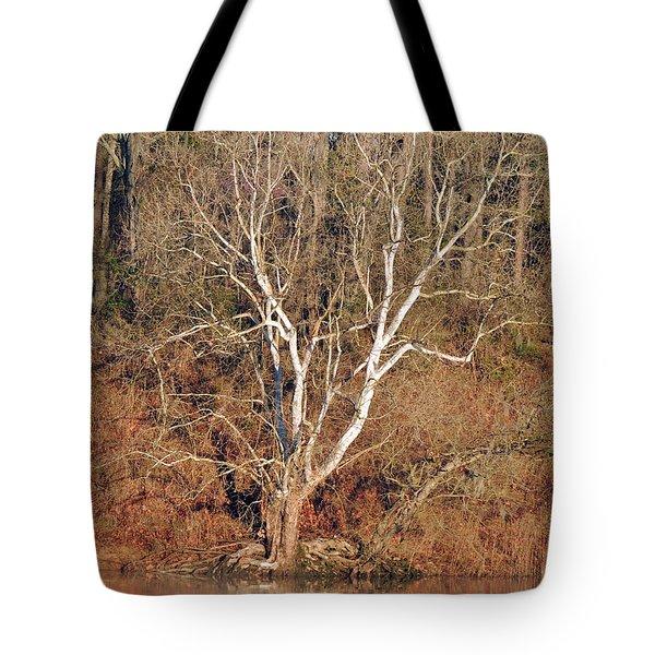 Flint River 25 Tote Bag