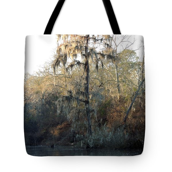 Tote Bag featuring the photograph Flint River 30 by Kim Pate