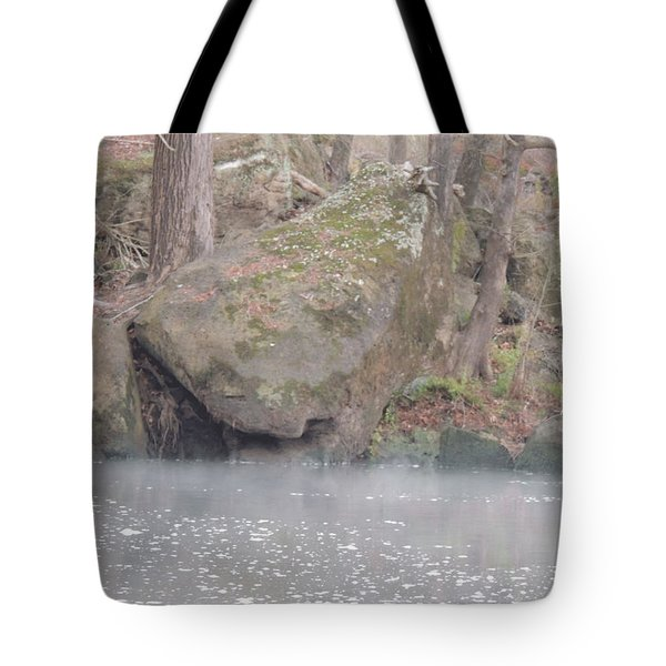 Tote Bag featuring the photograph Flint River 5 by Kim Pate