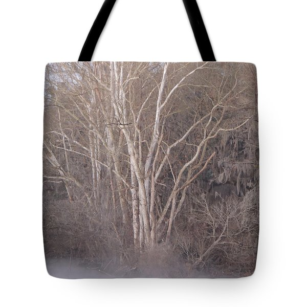 Tote Bag featuring the photograph Flint River 9 by Kim Pate