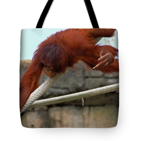 Flippin The Bird Tote Bag by Aimee L Maher Photography and Art Visit ALMGallerydotcom