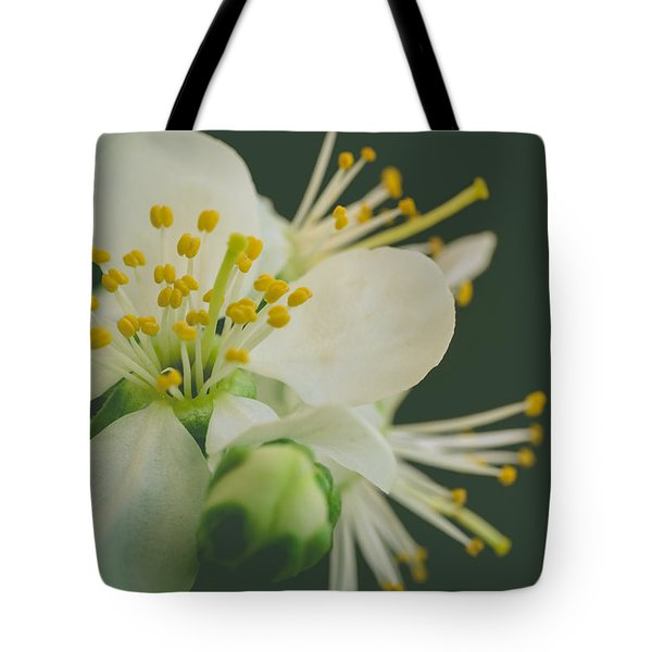 Floating In The Dark Tote Bag by Marco Oliveira