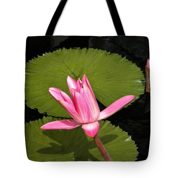 Floating Tote Bag by Jean Goodwin Brooks