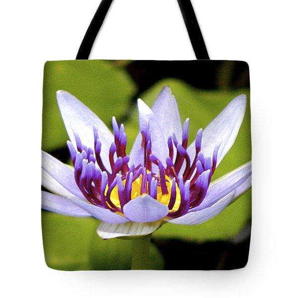 Floating Purple Waterlily Tote Bag by Lehua Pekelo-Stearns