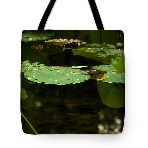 Tote Bag featuring the photograph Floating World 1 - Lily Pads  by Jane Eleanor Nicholas
