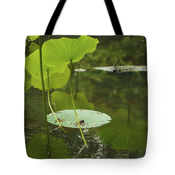 Tote Bag featuring the photograph Floating World #2 - Lotus Leaves Art Print by Jane Eleanor Nicholas