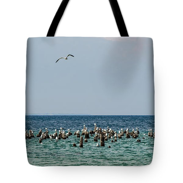 Flock Of Seagulls Tote Bag by Sebastian Musial