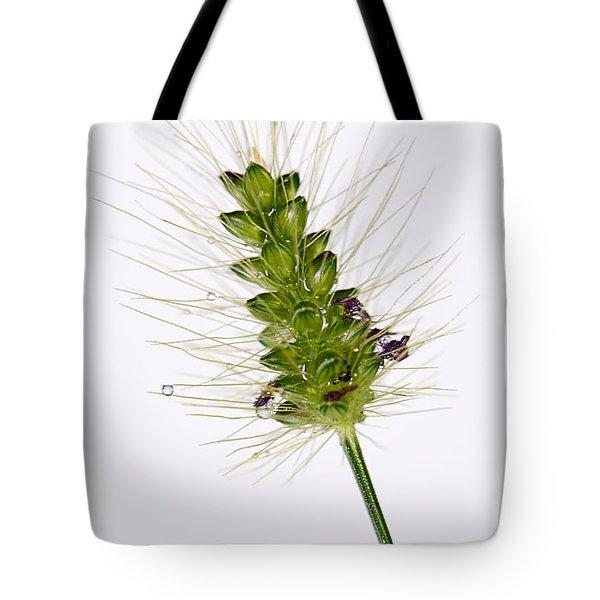 Floral 06_15_2013 Tote Bag by Eyzen M Kim