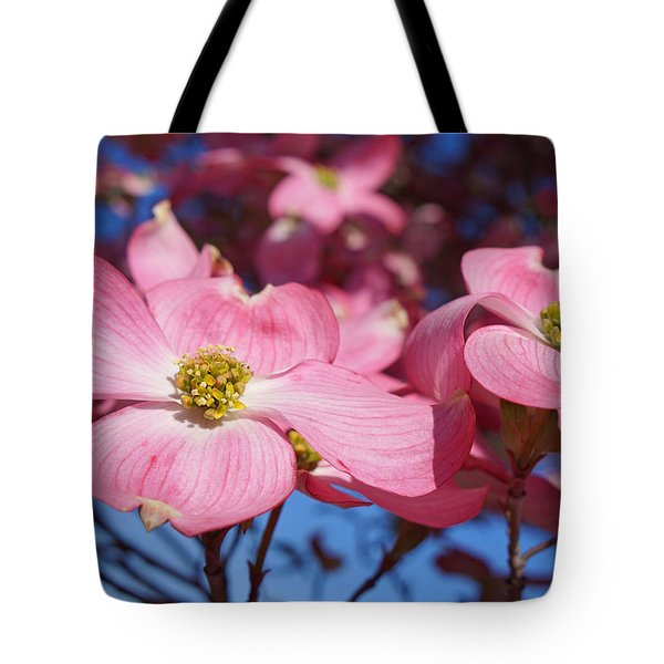Floral Art Print Pink Dogwood Tree Flowers Tote Bag by Baslee Troutman