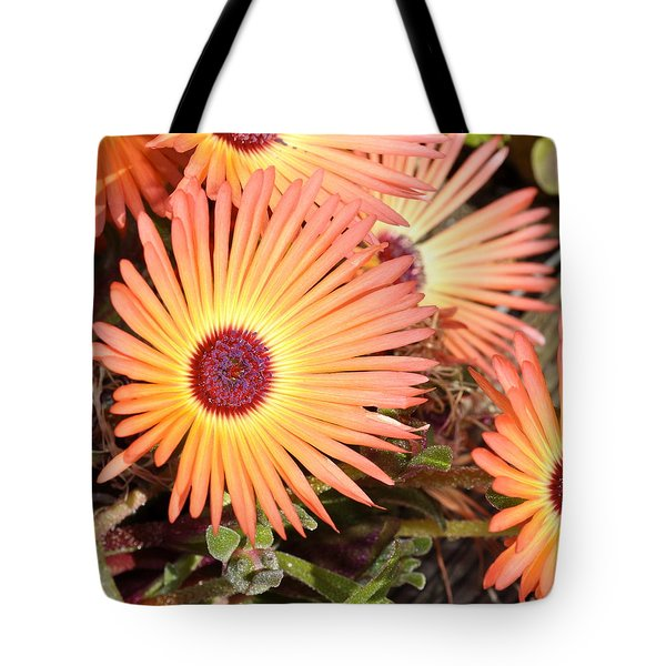 Tote Bag featuring the photograph Floral by Cathy Mahnke