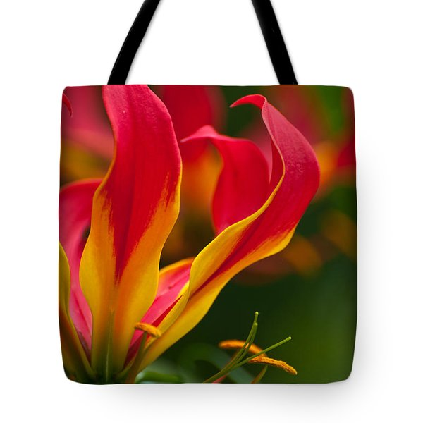 Tote Bag featuring the photograph Floral Flames by Sabine Edrissi