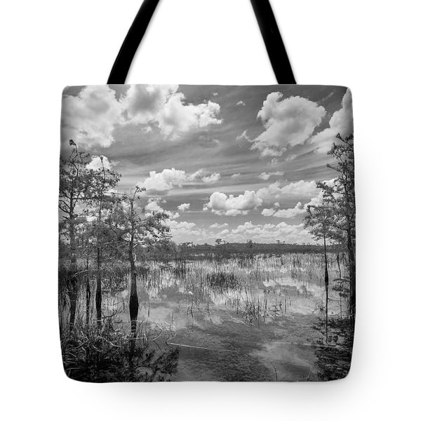 Florida Everglades 5210bw Tote Bag