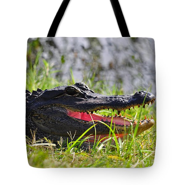 Gator Grin Tote Bag by Al Powell Photography USA