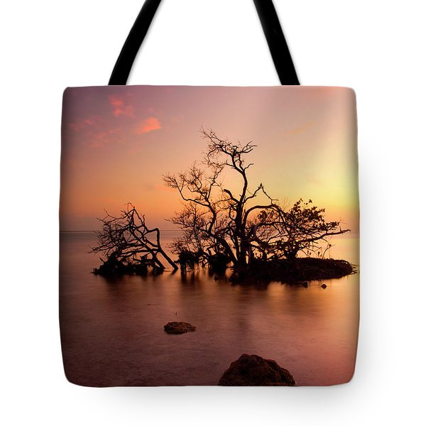 Florida Keys Sunset Tote Bag by Mike  Dawson