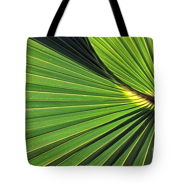 Florida Palm Frond Tote Bag by Larry Nieland