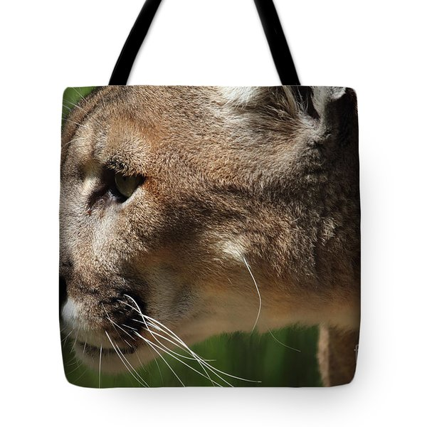 Tote Bag featuring the photograph Florida Panther Profile by Meg Rousher