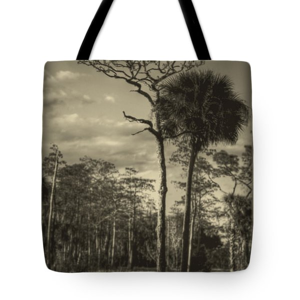 Florida Postcard Tote Bag by Debra and Dave Vanderlaan