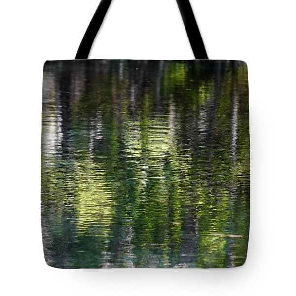 Florida Silver Springs River Tote Bag by Christine Till