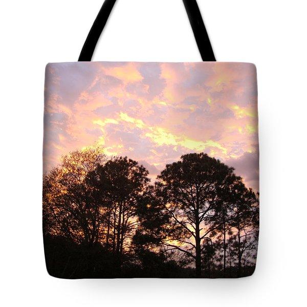 Florida Sunset Tote Bag by Veronica Rickard