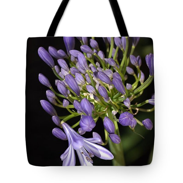 Flower- Agapanthus-blue-buds-one-flower Tote Bag by Joy Watson