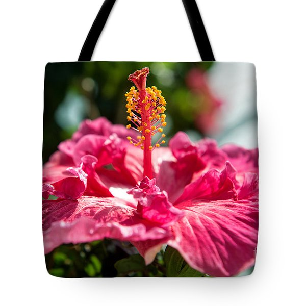 Tote Bag featuring the photograph Flower Closeup by Yew Kwang
