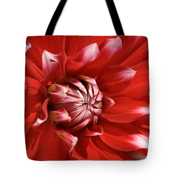 Flower- Dahlia-red-white Tote Bag