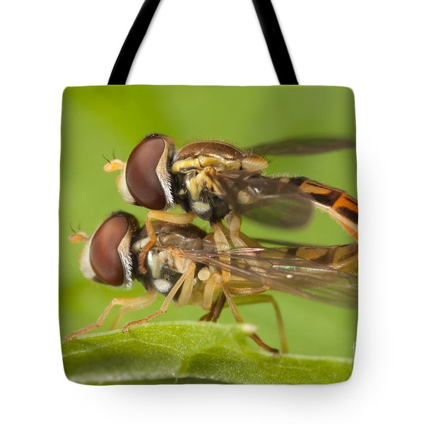 Flower Flies Mating Tote Bag by Clarence Holmes