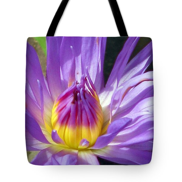 Flower Garden 70 Tote Bag