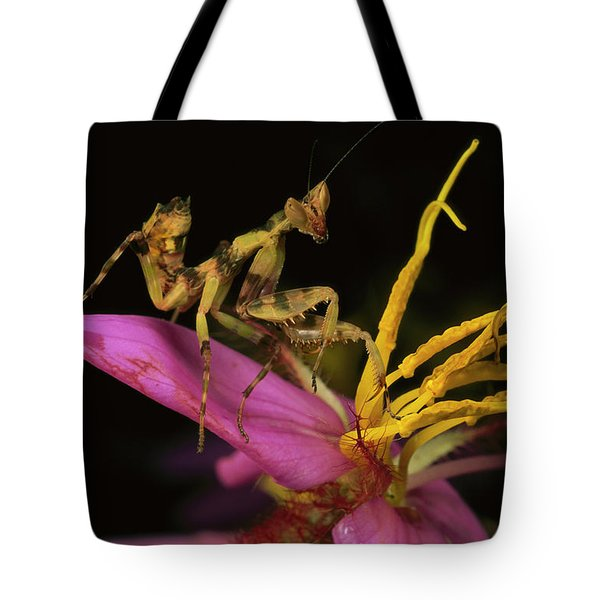 Flower Mantis Nymph Tote Bag by Mark Moffett