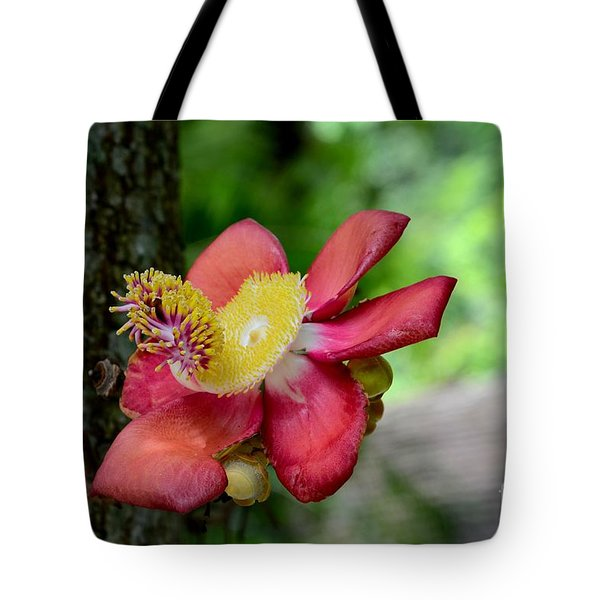 Flower Of Cannonball Tree Singapore Tote Bag
