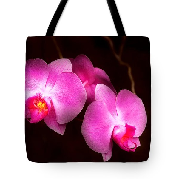 Flower - Orchid - Better In A Set Tote Bag by Mike Savad