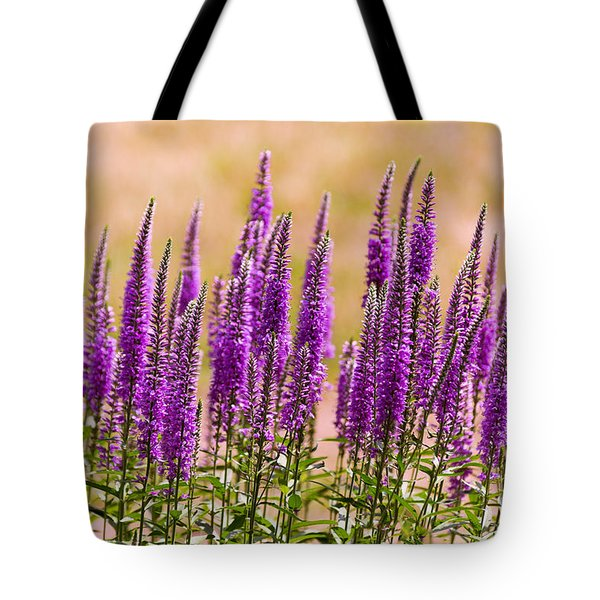 Flower - Speedwell Figwort Family - I Dream Of Lavender  Tote Bag by Mike Savad