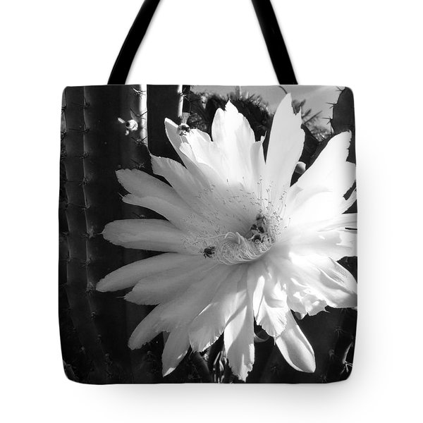 Flowering Cactus 1 Bw Tote Bag