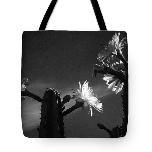 Tote Bag featuring the photograph Flowering Cactus 4 Bw by Mariusz Kula