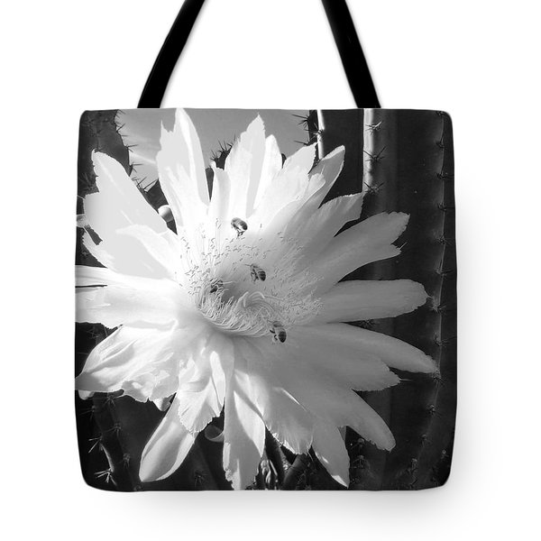 Tote Bag featuring the photograph Flowering Cactus 5 Bw by Mariusz Kula
