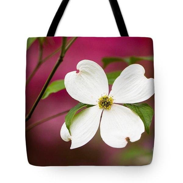Flowering Dogwood Blossoms Tote Bag by Oscar Gutierrez