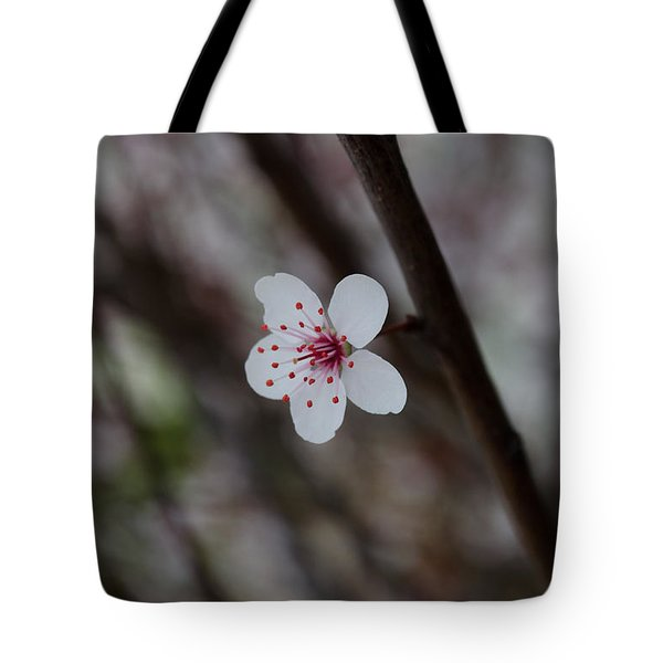 Flowering Plum 3 Tote Bag