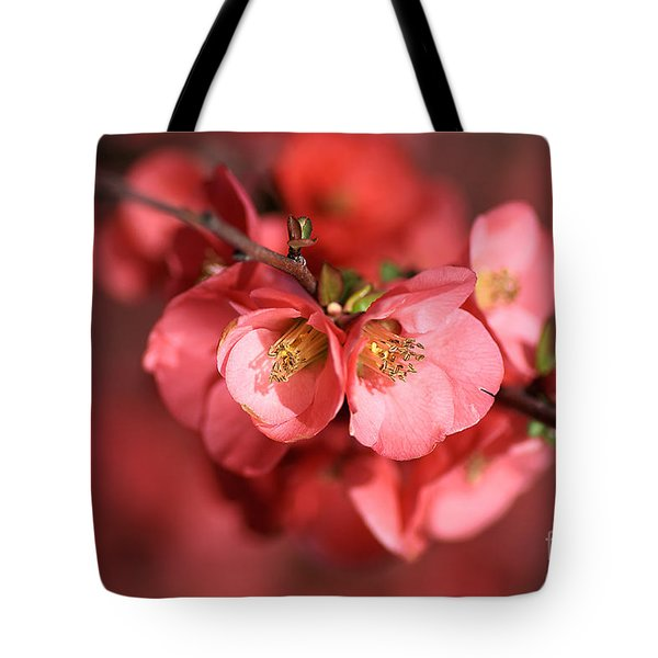 Flowering Quince Tote Bag by Joy Watson