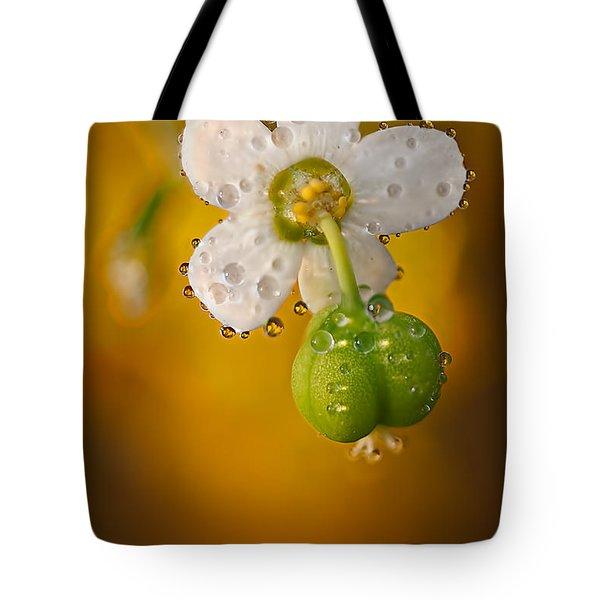 Flowering Spurge  Tote Bag