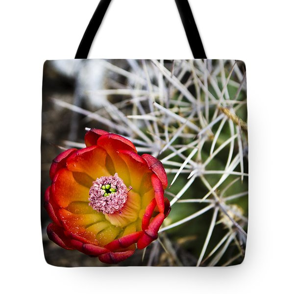 Blooming Texas Cactus Tote Bag