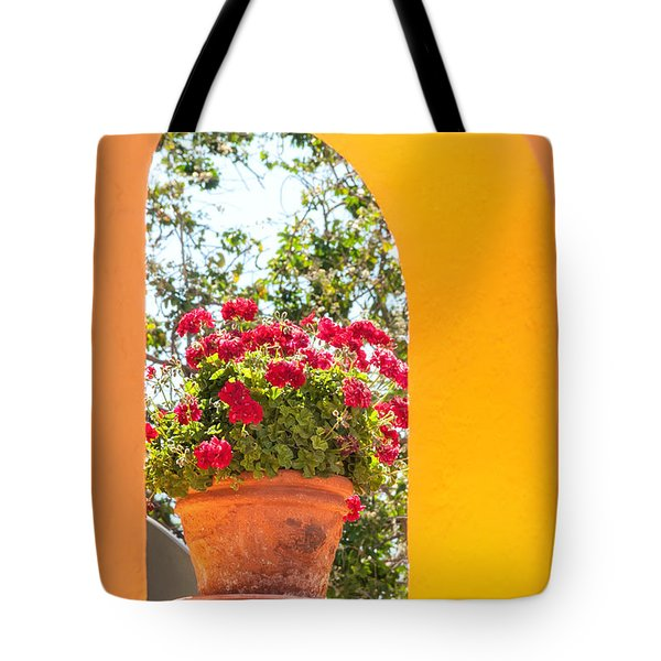 Tote Bag featuring the photograph Flowerpot In A Mexican Wall by David Perry Lawrence