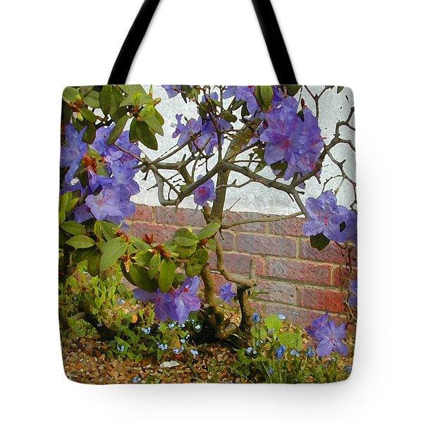 Flowers Against The Wall Tote Bag by Lenore Senior and Constance Widen