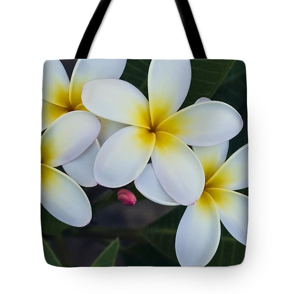 Flowers And Their Bud Tote Bag