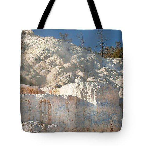 Flowing Minerals Tote Bag by Wanda Krack