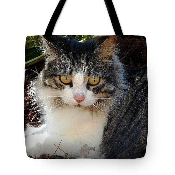 Fluffy Cat Tote Bag by Pamela Walton