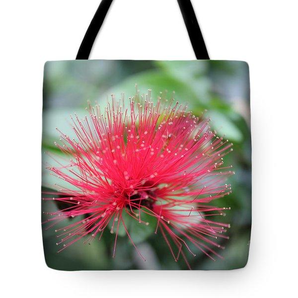 Fluffy Pink Flower Tote Bag by Sergey Lukashin